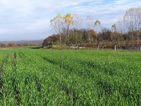 Make Better Change: No-till Farming