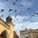 Morning Krakow; Snezhana Boyadzhieva for AUBG Daily